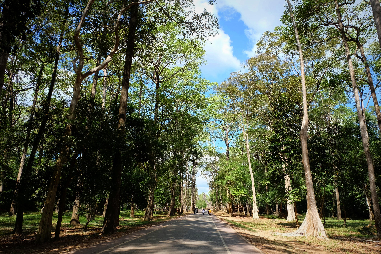 Cambodia blog1
